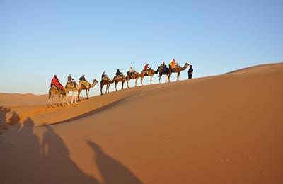 Morocco 행 페리